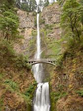 Multnomah Falls. Columbia River Gorge, Oregon. - Photo #28299