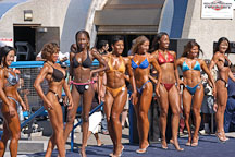 Female bodybuilders posing in a line. Muscle beach, Venice, California, USA. - Photo #8661