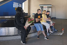 Man in gorilla suit with flowers. Bob Hope Airport, Burbank, California, USA. - Photo #8360