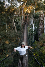 Walking a jungle canopy bridge. Amazon, Peru - Photo #8901
